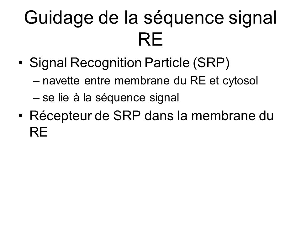 Guidage de la séquence signal RE