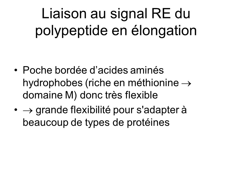 Liaison au signal RE du polypeptide en élongation