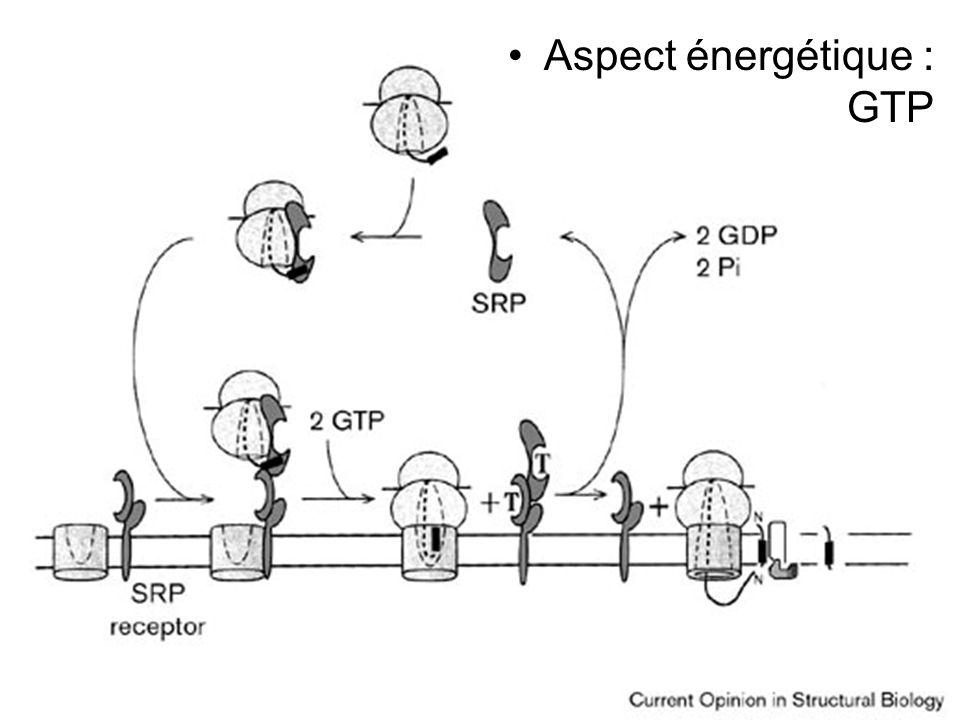 Stroud,RM1999Fig 1 Aspect énergétique : GTP Jeudi 27 septembre 2007
