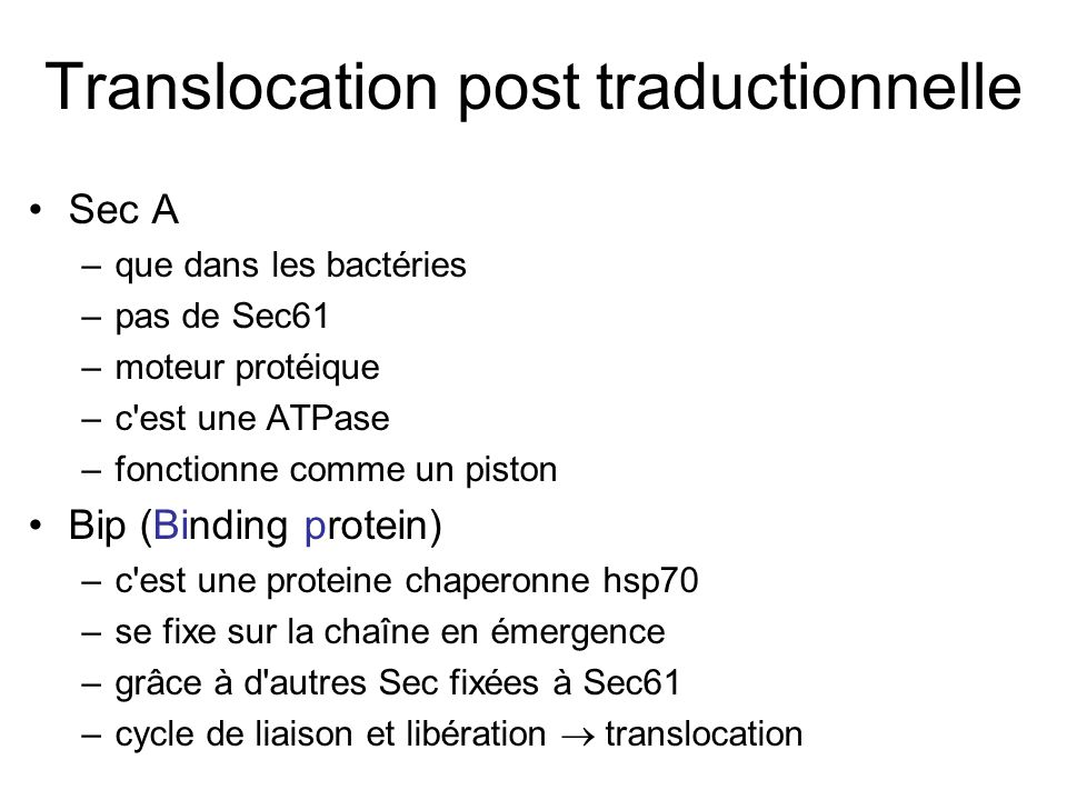 Translocation post traductionnelle