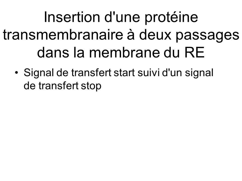 Insertion d une protéine transmembranaire à deux passages dans la membrane du RE