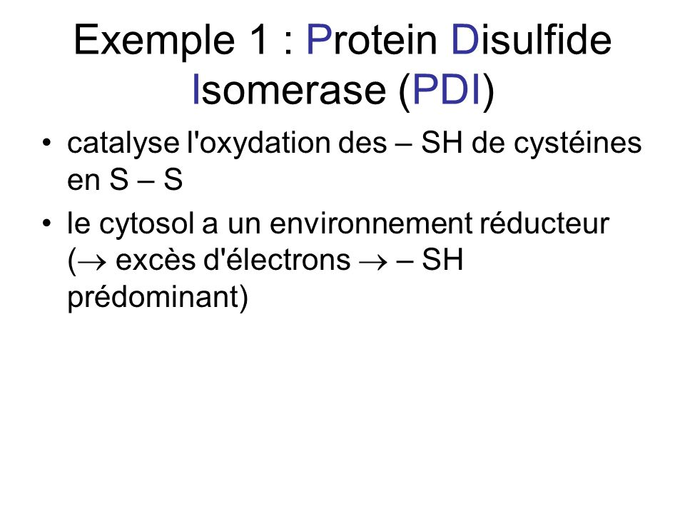 Exemple 1 : Protein Disulfide Isomerase (PDI)