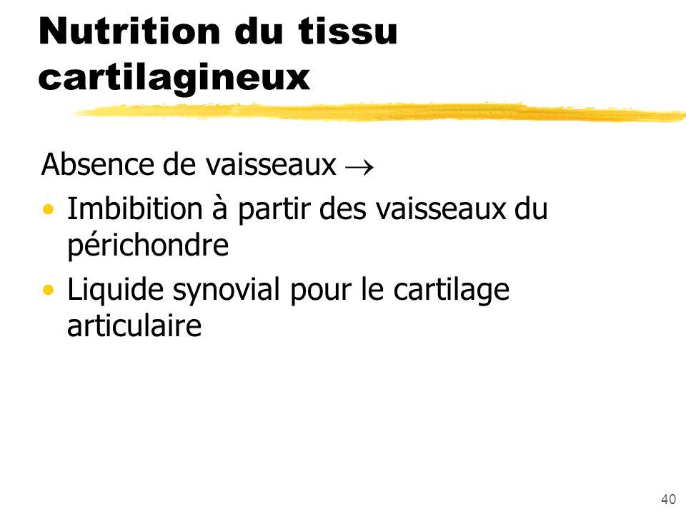 Nutrition du tissu cartilagineux