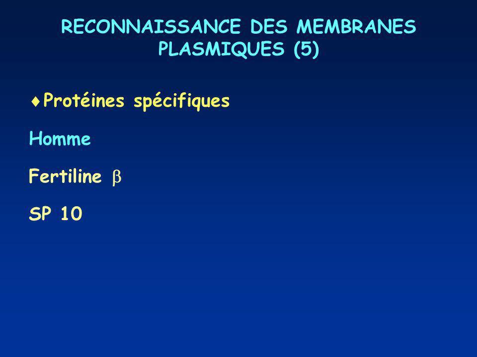 RECONNAISSANCE DES MEMBRANES PLASMIQUES (5)