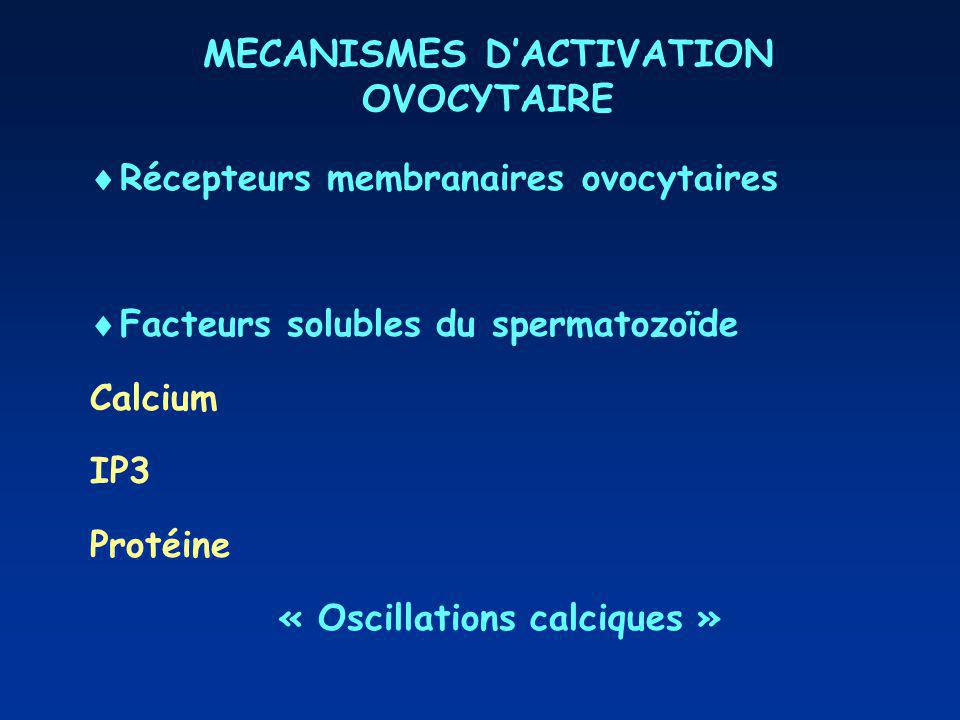 MECANISMES D'ACTIVATION OVOCYTAIRE