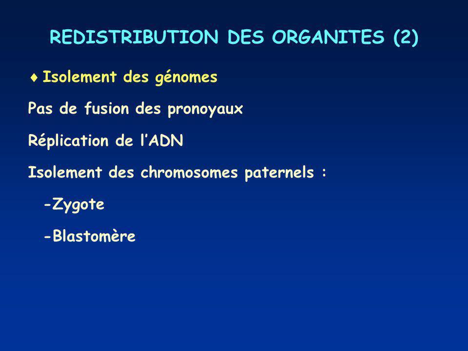 REDISTRIBUTION DES ORGANITES (2)