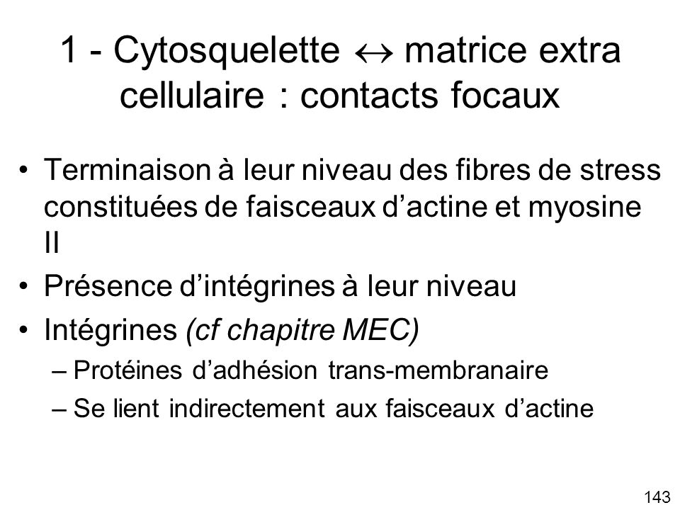 1 - Cytosquelette  matrice extra cellulaire : contacts focaux
