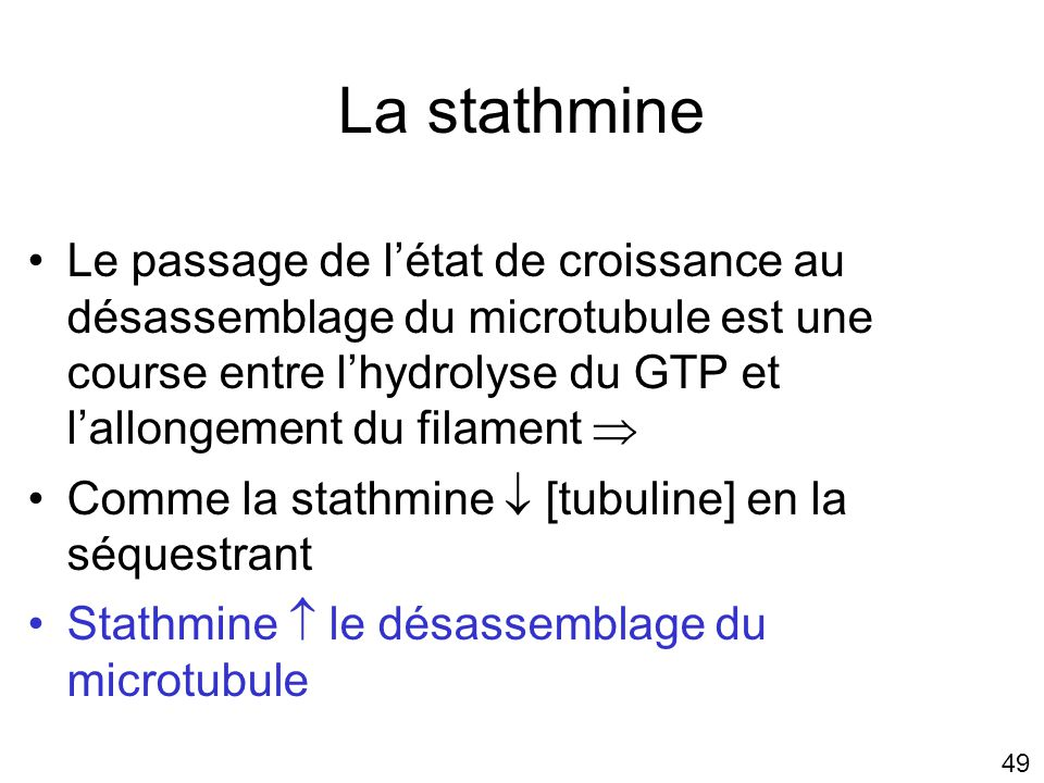 Lundi 22 octobre 2007 La stathmine.