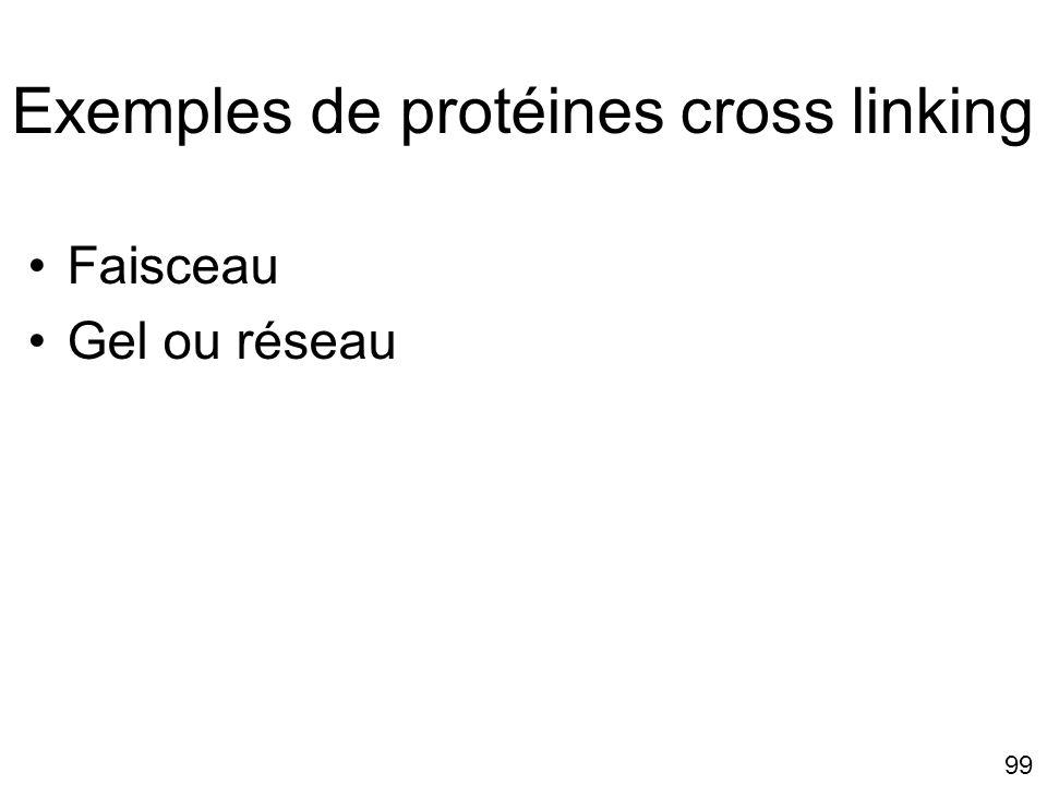 Exemples de protéines cross linking