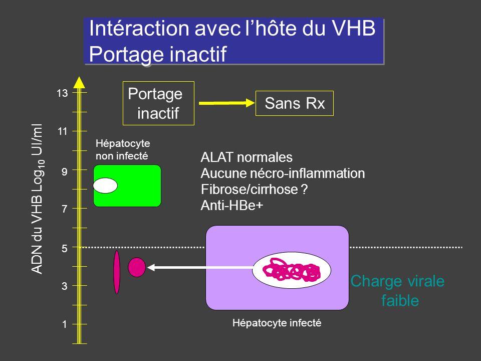Intéraction avec l'hôte du VHB Portage inactif
