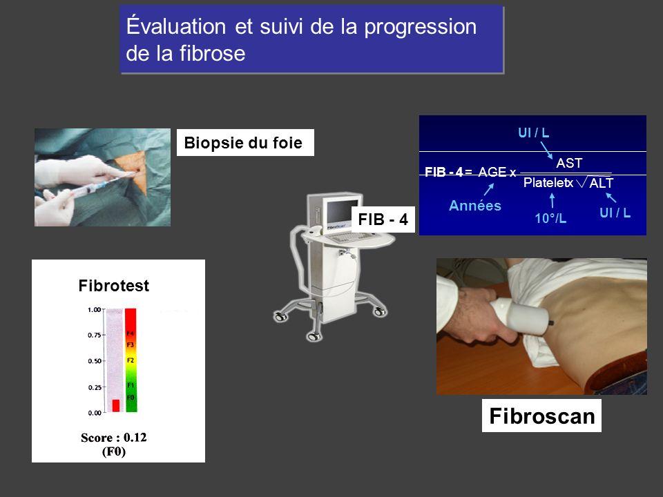 Évaluation et suivi de la progression de la fibrose