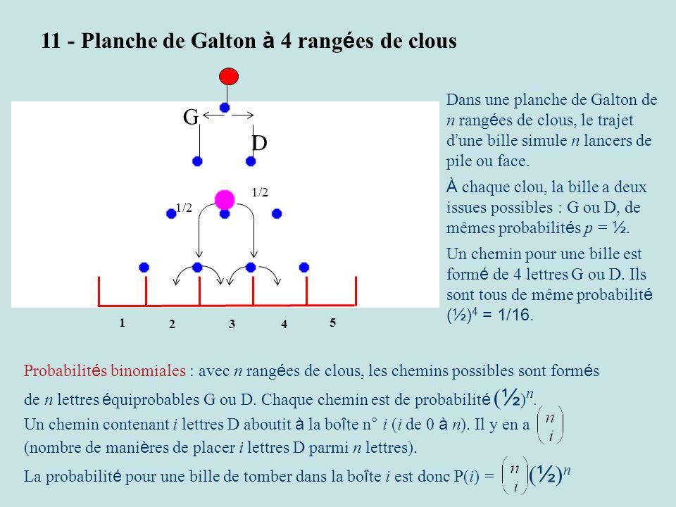 11 - Planche de Galton à 4 rangées de clous