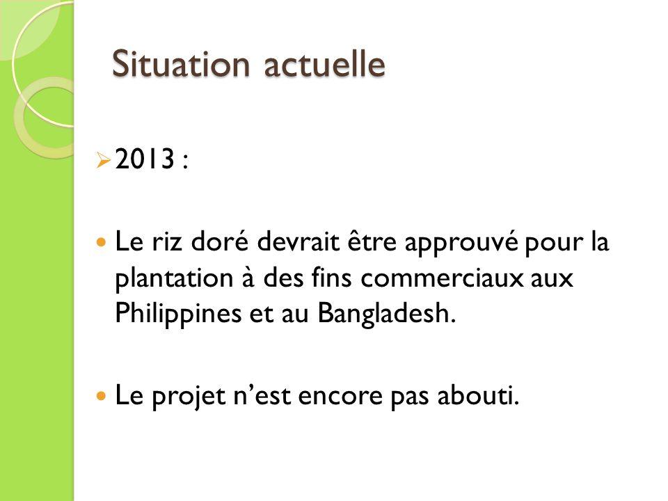 Situation actuelle 2013 : Le riz doré devrait être approuvé pour la plantation à des fins commerciaux aux Philippines et au Bangladesh.