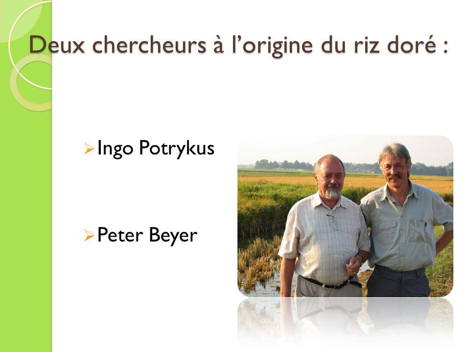 Deux chercheurs à l'origine du riz doré :