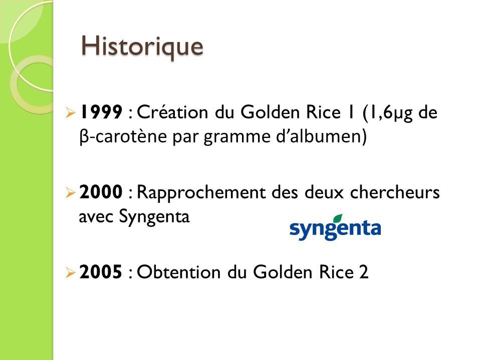 Historique 1999 : Création du Golden Rice 1 (1,6µg de β-carotène par gramme d'albumen) 2000 : Rapprochement des deux chercheurs avec Syngenta.