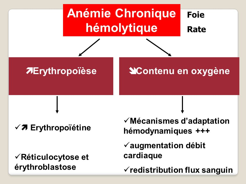 Anémie Chronique hémolytique