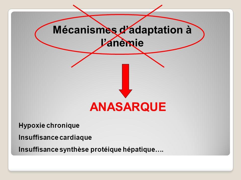 Mécanismes d'adaptation à l'anémie