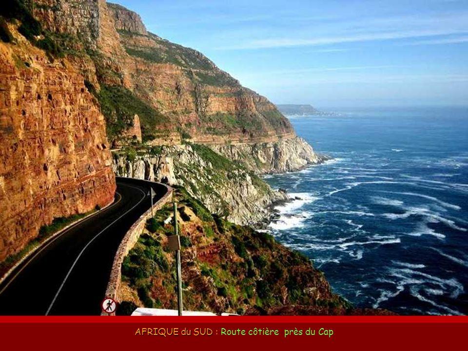 AFRIQUE du SUD : Route côtière près du Cap