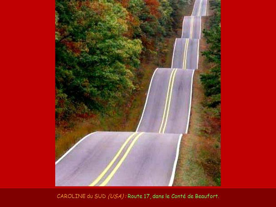 CAROLINE du SUD (USA) : Route 17, dans le Conté de Beaufort.