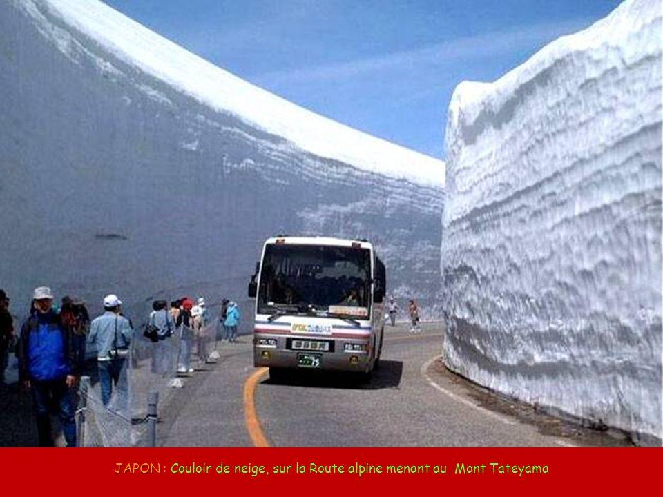 JAPON : Couloir de neige, sur la Route alpine menant au Mont Tateyama