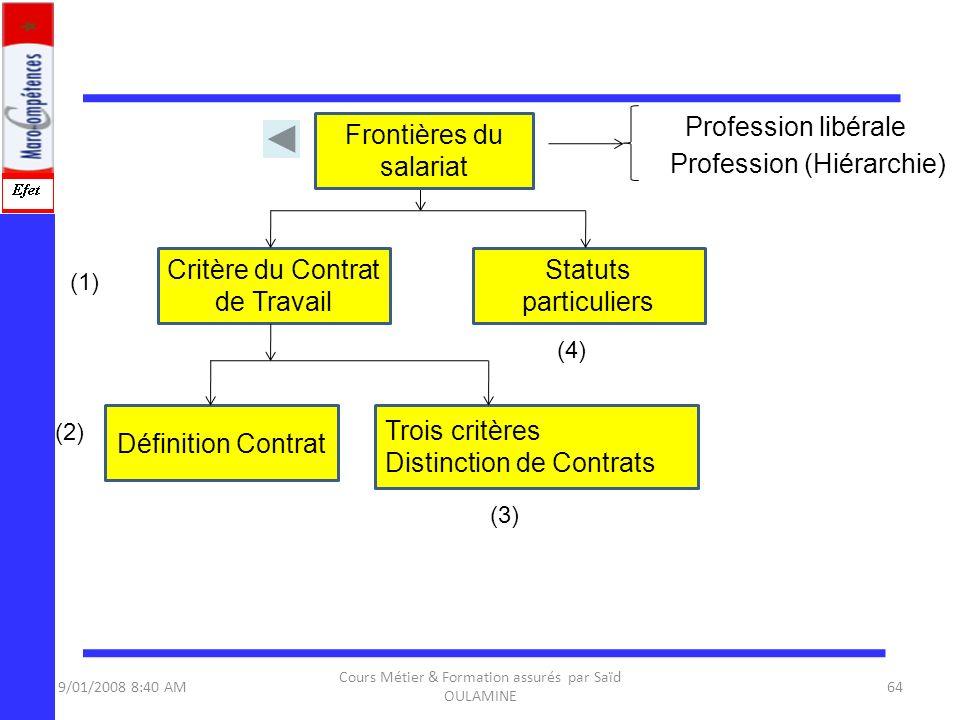 Frontières du salariat Profession (Hiérarchie)
