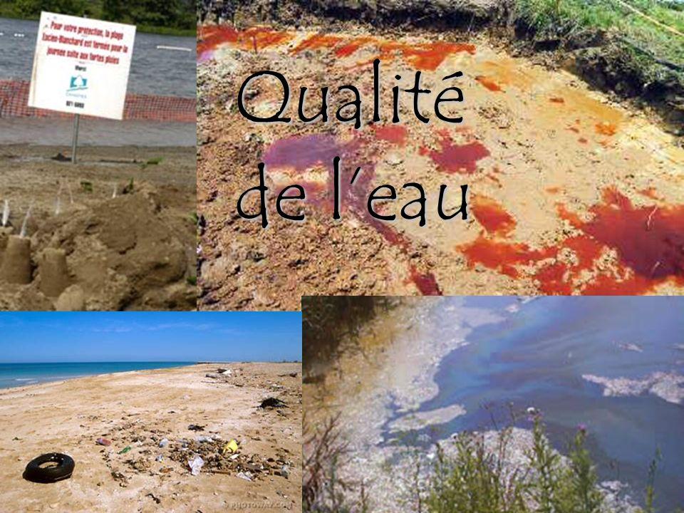 Qualité de l'eau Mais ce n'est pas suffisant d'avoir accès à l'eau douce… Cette eau est-elle potable