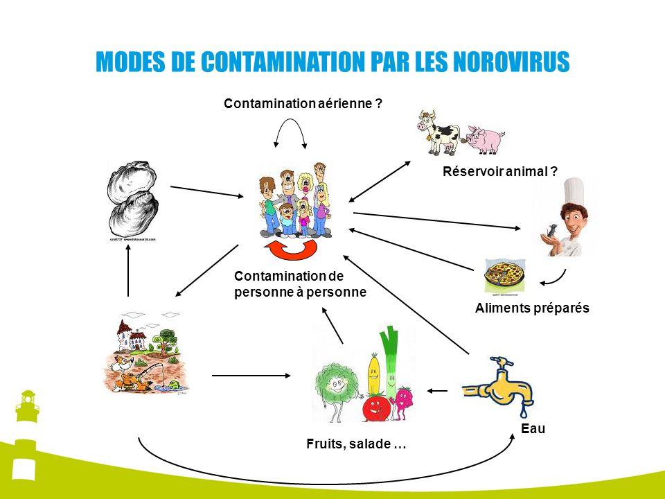 MODES DE CONTAMINATION PAR LES NOROVIRUS