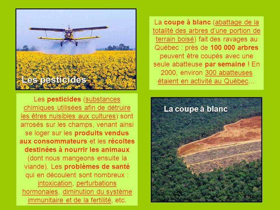 Les pesticides La coupe à blanc