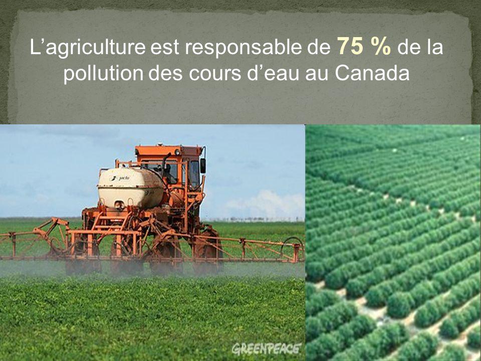 L'agriculture est responsable de 75 % de la pollution des cours d'eau au Canada