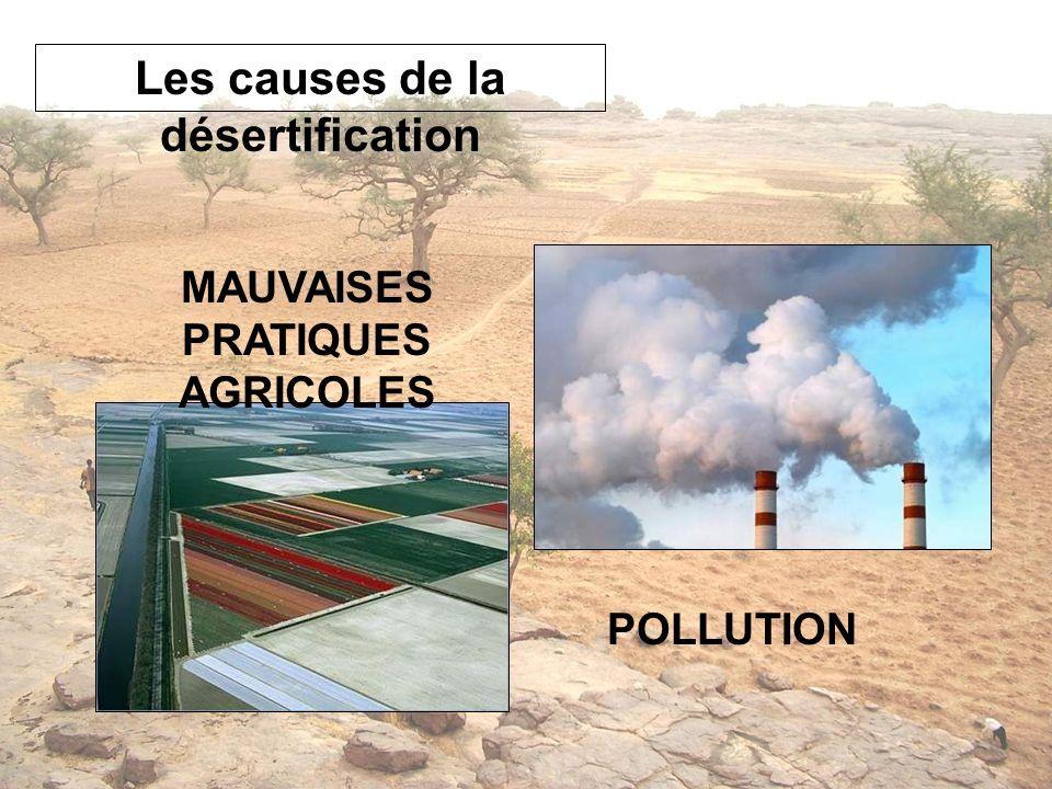 Les causes de la désertification MAUVAISES PRATIQUES AGRICOLES