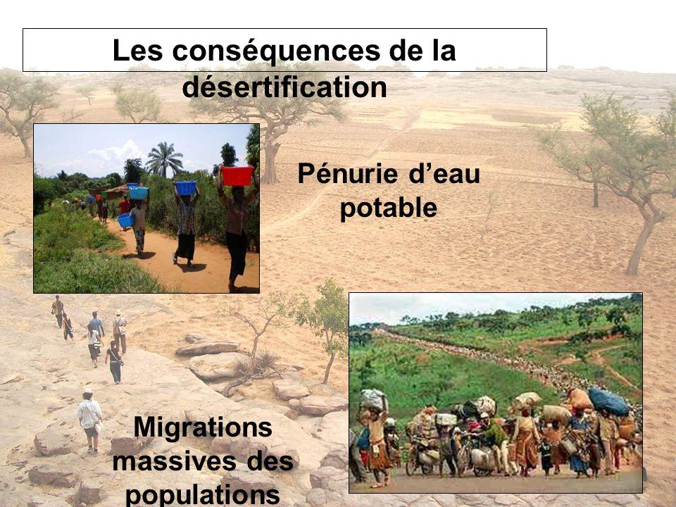 Les conséquences de la désertification