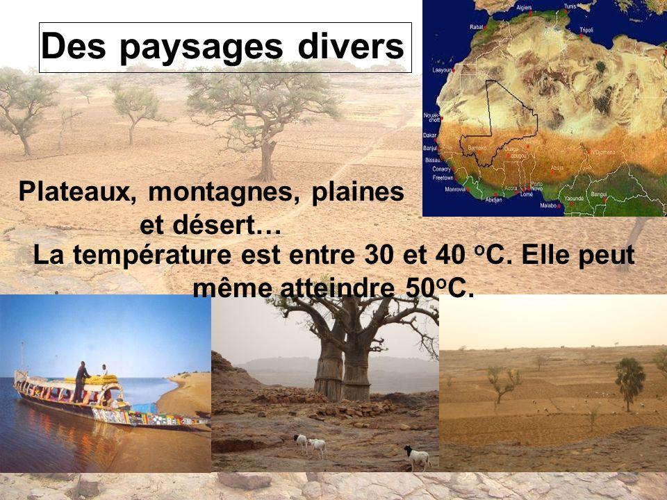 Des paysages divers Plateaux, montagnes, plaines et désert…
