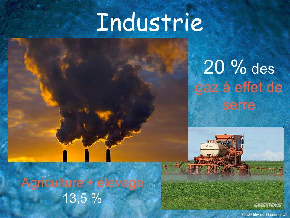 Industrie 20 % des gaz à effet de serre Agriculture + élevage 13,5 %