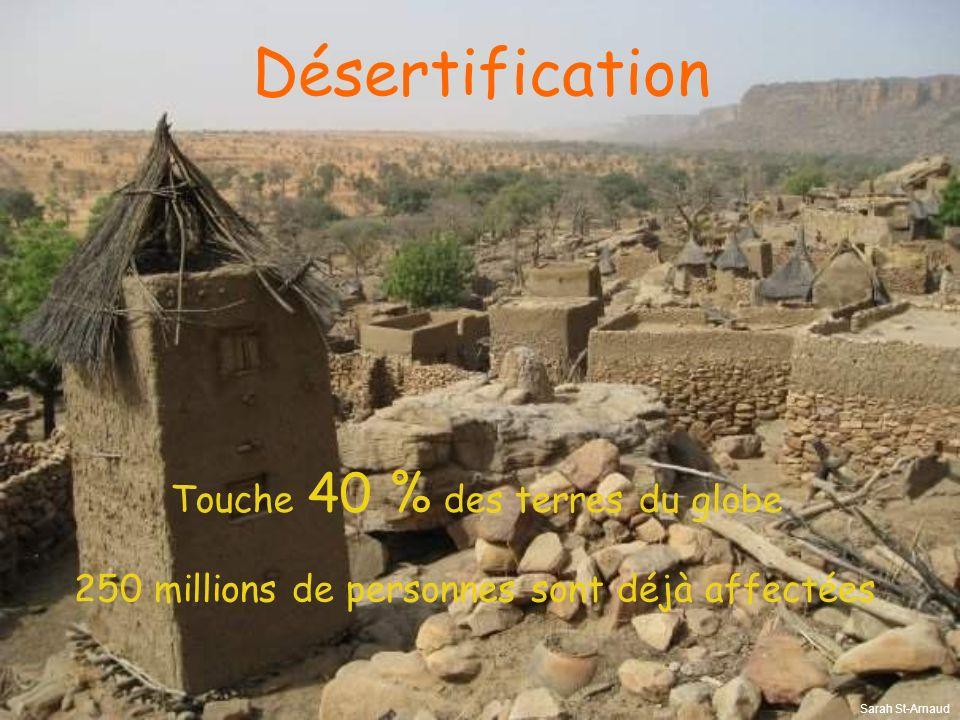 Désertification Touche 40 % des terres du globe