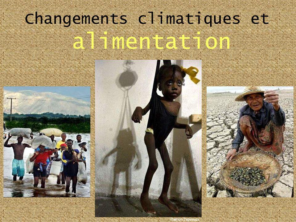 Changements climatiques et alimentation