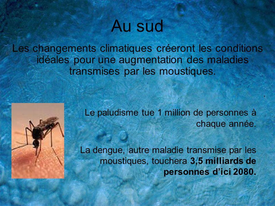 Au sud Les changements climatiques créeront les conditions idéales pour une augmentation des maladies transmises par les moustiques.