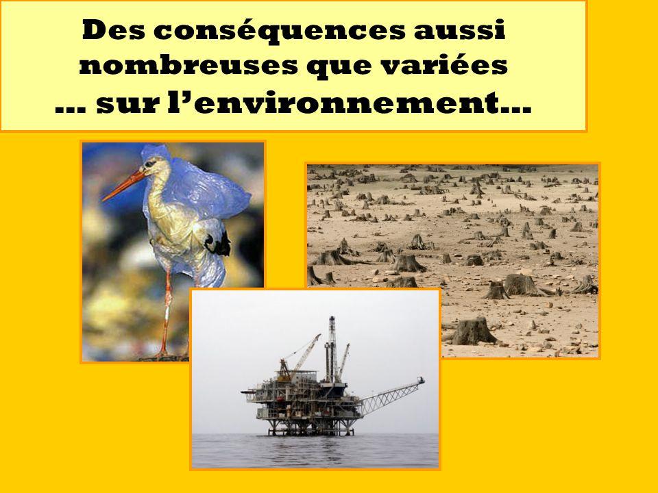 Des conséquences aussi nombreuses que variées … sur l'environnement…