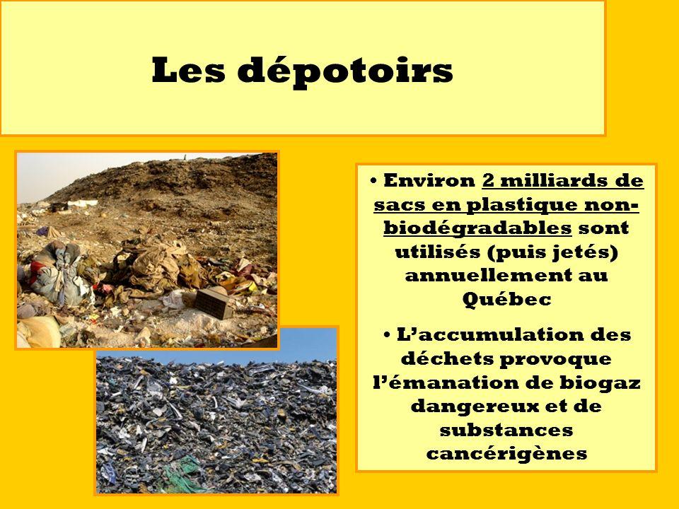 Les dépotoirs Environ 2 milliards de sacs en plastique non-biodégradables sont utilisés (puis jetés) annuellement au Québec.