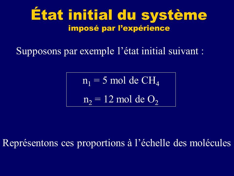 État initial du système imposé par l'expérience