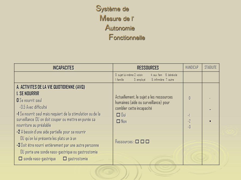 Système de Mesure de l' Autonomie Fonctionnelle
