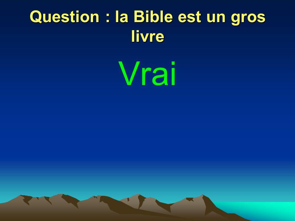 Question : la Bible est un gros livre