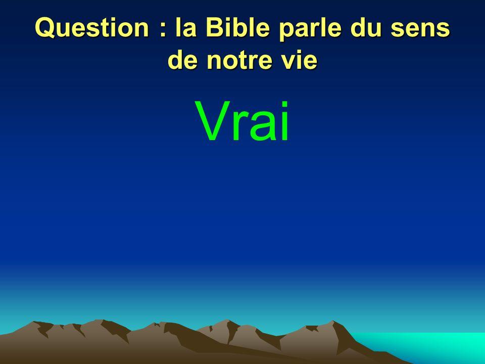 Question : la Bible parle du sens de notre vie