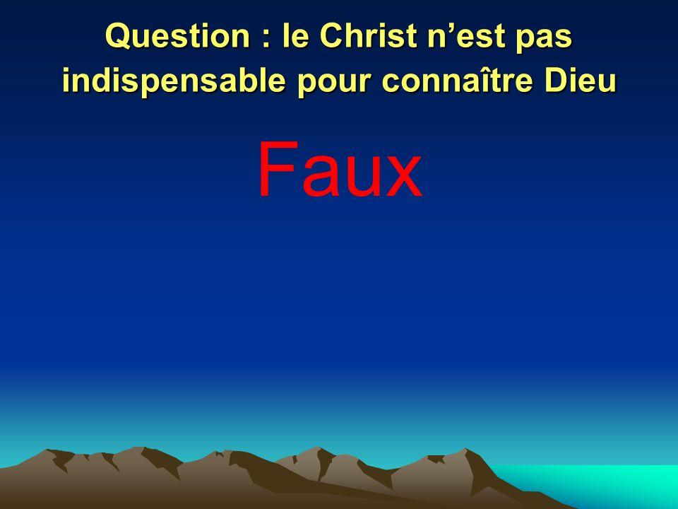 Question : le Christ n'est pas indispensable pour connaître Dieu