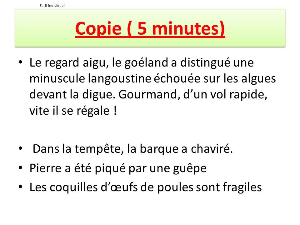 Ecrit individuelCopie ( 5 minutes)