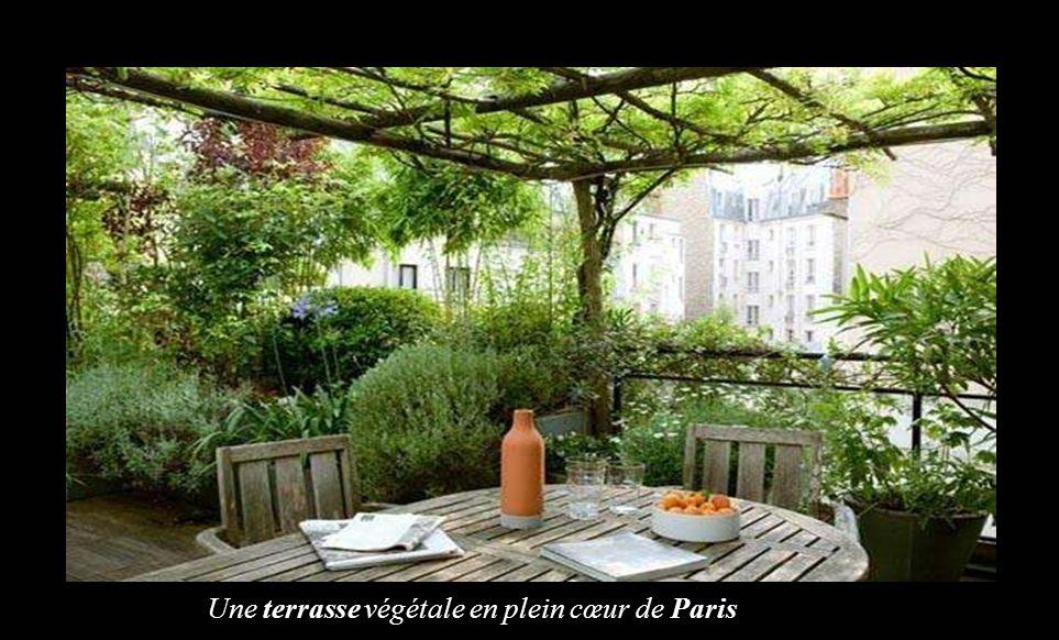Une terrasse végétale en plein cœur de Paris