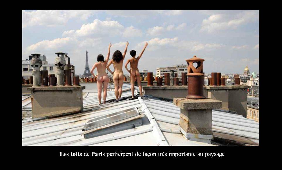 Les toits de Paris participent de façon très importante au paysage
