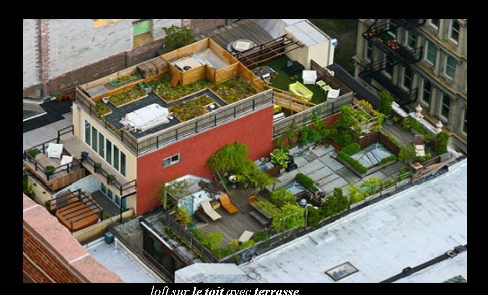 loft sur le toit avec terrasse