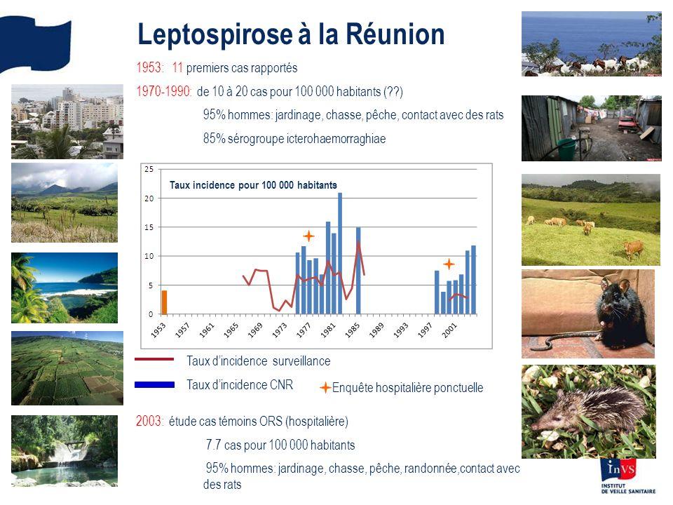 Leptospirose à la Réunion