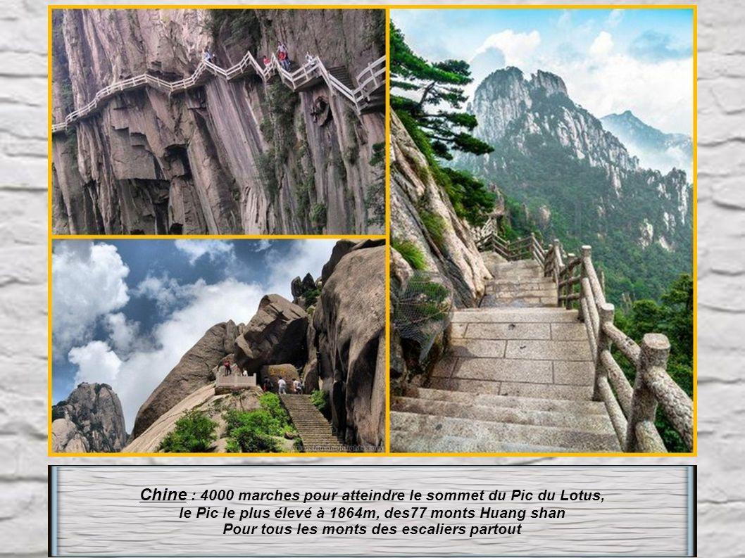 Chine : 4000 marches pour atteindre le sommet du Pic du Lotus,
