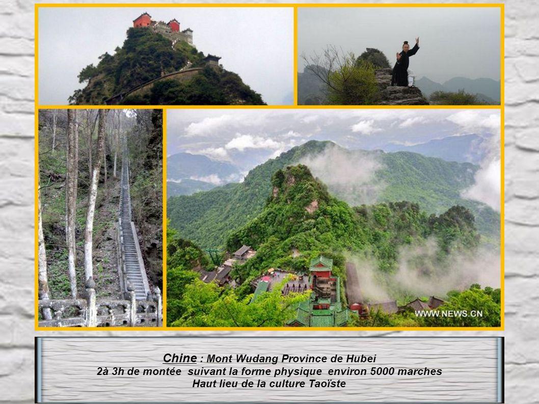 Chine : Mont Wudang Province de Hubei